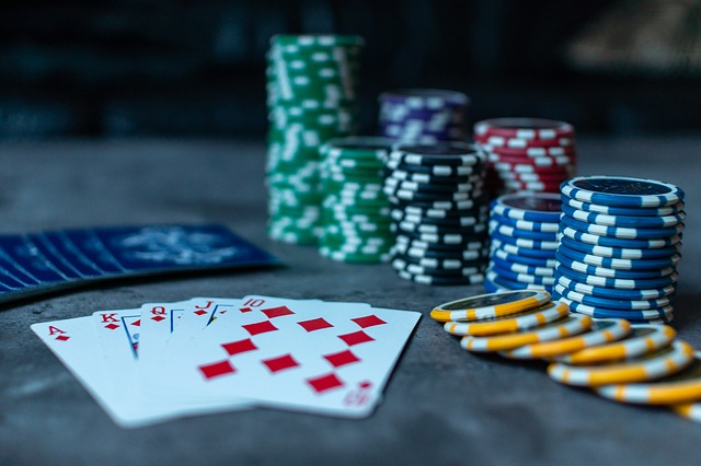 Which will be the reliable platform for doing online gambling?