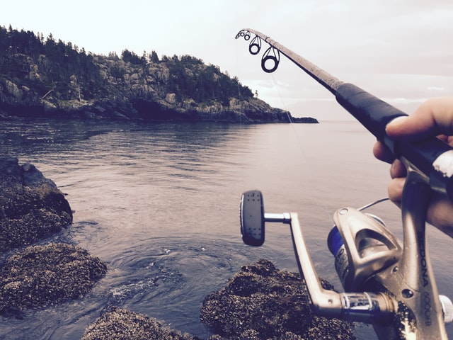 Essential Features Of A Fish Finder For The People